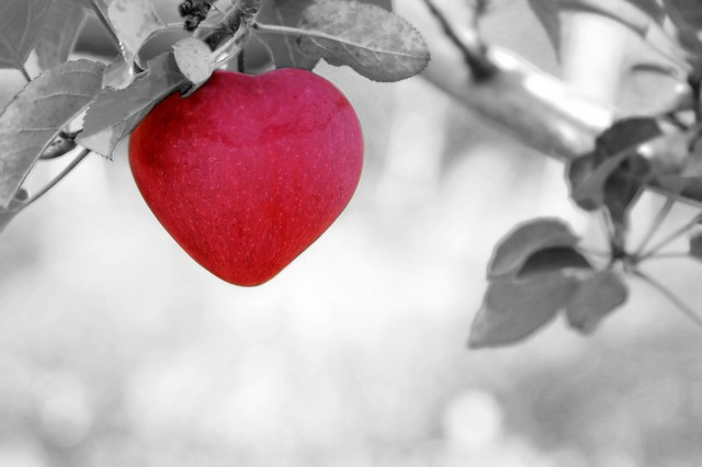 apple-570965_640.jpg