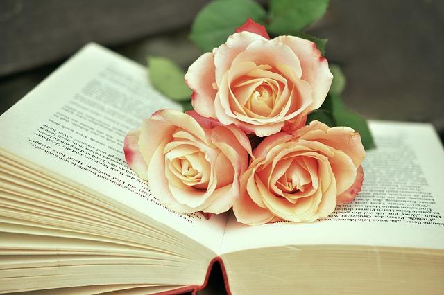 book-1771073_640.jpg