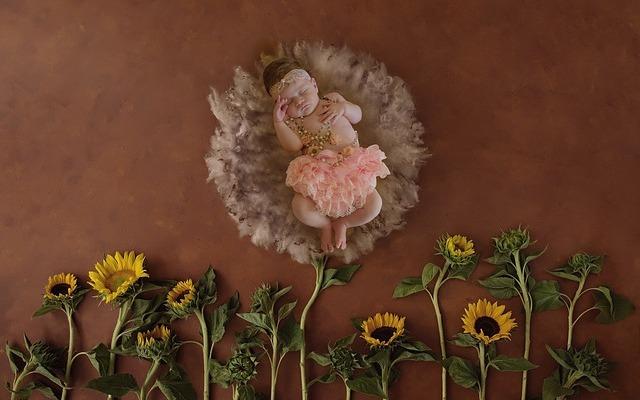 newborn-2736455_640.jpg