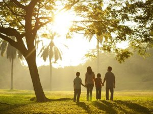 отношения с подростками, быть альфой, иерархия привязанности