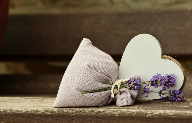 lavender-823600_960_720.jpg