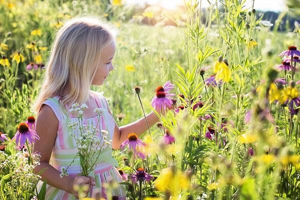 little-girl-2516578_960_720.jpg