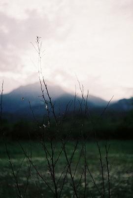 одиночество, созерцание